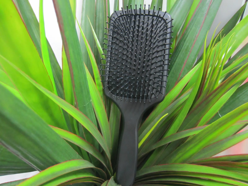 Absolique Scalp Brush Therapy
